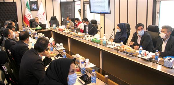 Assessing subsidiary companies' performance in annual General Assembly meeting