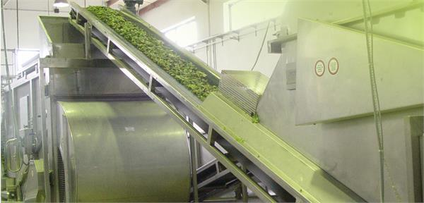 IRCS produces 4 tons of herbal extract for veterinary network, MPO's managing director reported